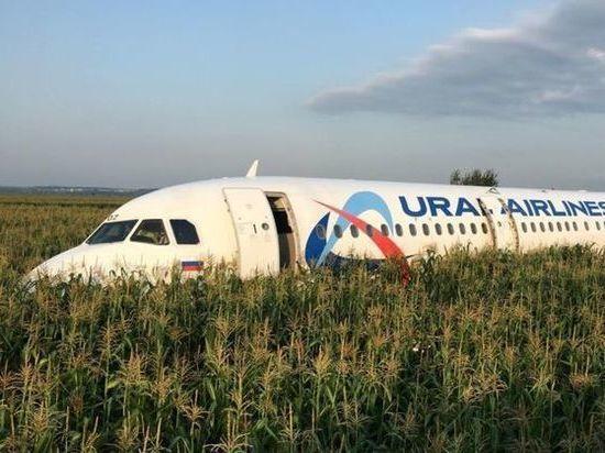 Председатель Курултая Башкирии намерен наградить стюардессу севшего в поле самолета