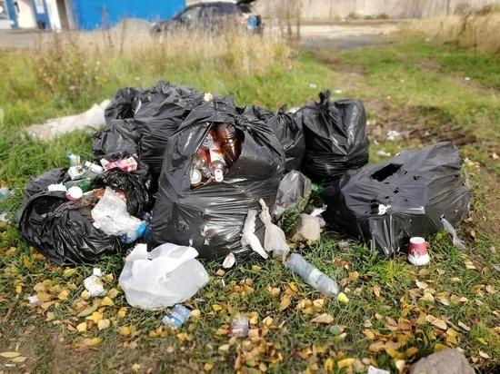 Дачников предупредили о серьезных штрафах за отсутствие договоров на вывоз мусора