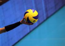 Опубликовано «видео насилия полицейских над юной волейболисткой в Анапе»