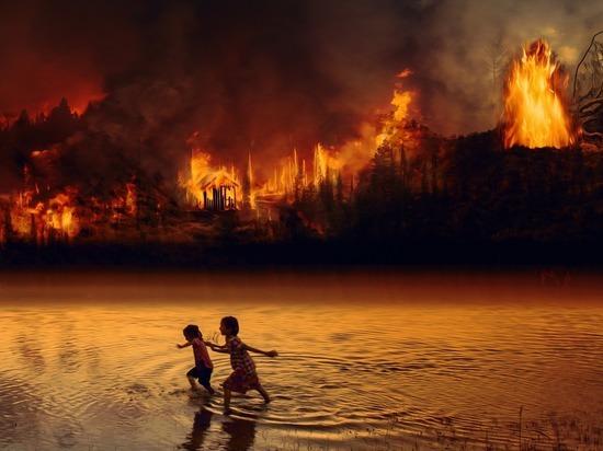 Поступила последняя информация о пожарах в лесах Ямала