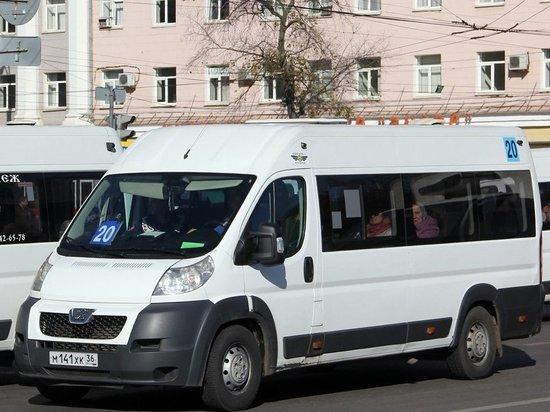 ГОПТ — реформа: в Воронеже планируют отменить 29 маршрутов