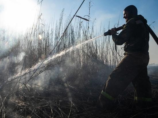 Добровольцы третьи сутки тушат природный пожар в Калининском районе