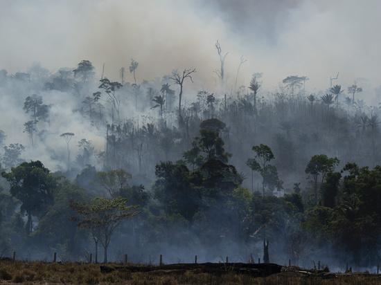 У сибирских пожаров нашлись «близнецы» в Бразилии: власти закрывали глаза