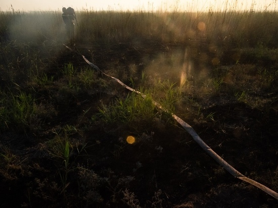 Ситуацию с природным пожаром в Калининском районе прокомментировали в МЧС