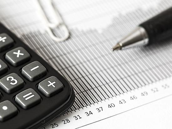 В Минфине Карелии рассказали, как многодетным получить вычет по земельному налогу