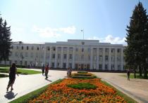 Профильные комитеты Законодательного собрания Нижегородской области обсудили новые инициативы