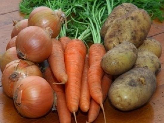 Морковь, лук и картофель упали в цене в Ростовской области