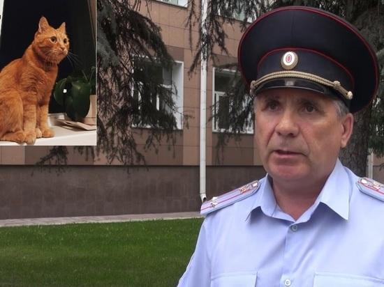 Полиция заявила, что в Новосибирске замучили только одного кота