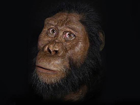 Воссоздано лицо древнейшего известного науке человека