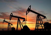 «Миллионы инвестиций»: «Роснефть» расширяет присутствие на мировых рынках топлива