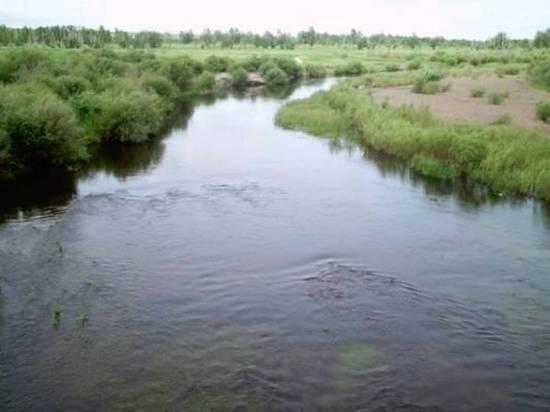 Пятилетний мальчик упал с лошади и утонул в реке Борзе