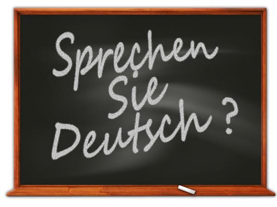 Более 3 млрд евро потратила Германия на курсы немецкого языка