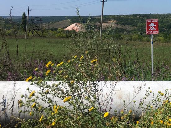 Донбасс объединил «межгосударственный» пограничный переход: жизнь порознь стала привычной