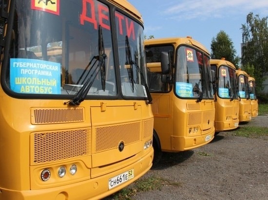 Новосибирским школьникам выделили более 20 автобусов