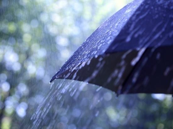 В Челябинской области до +14, дожди