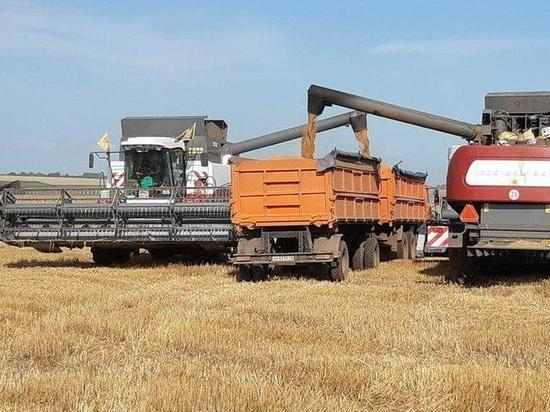 Урожайность этого года вЧувашии  превышает прошлый год
