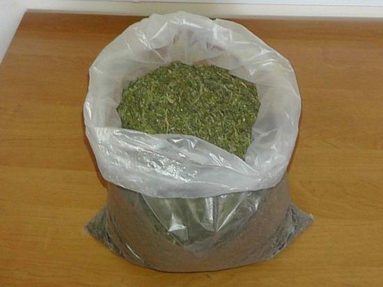 Тамбовчанина задержали с двумя килограммами конопли