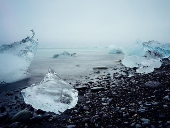Российские ученые предрекли экологическую катастрофу