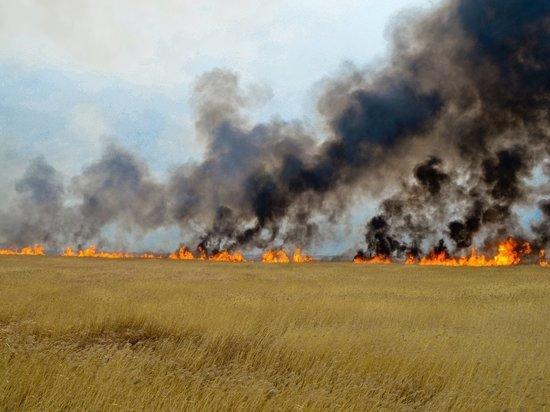 В Оренбургской области объявлена пожарная опасность пятого класса
