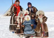 Продолжается перепись коренных народов Ямала