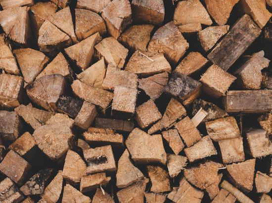 Минприроды опроверг слухи о незаконной вырубке леса в Косихинском районе