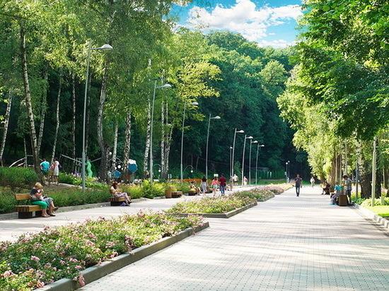 В Центральном парке Воронежа на неделю запретили движение машин