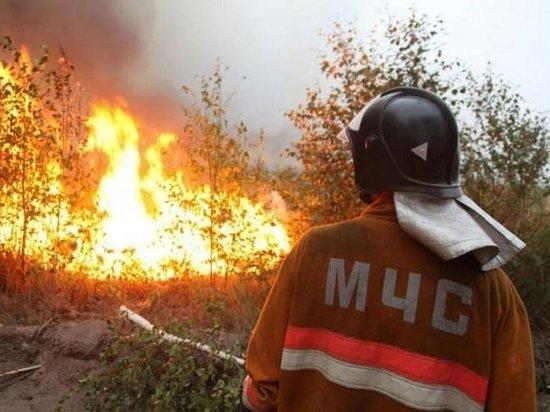 МЧС: в Воронежской области объявлено штормовое предупреждение
