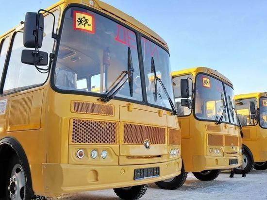 Рязанская область получит новые школьные автобусы и машины скорой