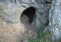 Археологи сообщили о сенсации: на Алтае найдено древнейшее изображение животного