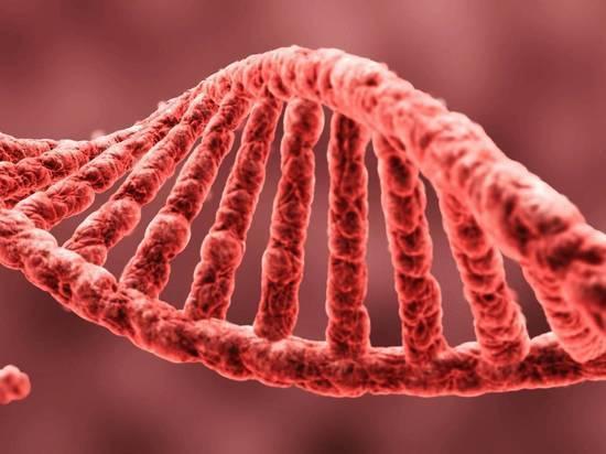 Воронежские полицейские вычислили вора по ДНК