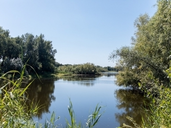 Уровень воды в водоемах Волго-Ахтубинской поймы восстановлен