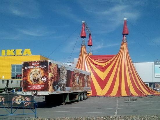 Цирк уехал: популярный ТЦ в Новосибирске отказался от шапито