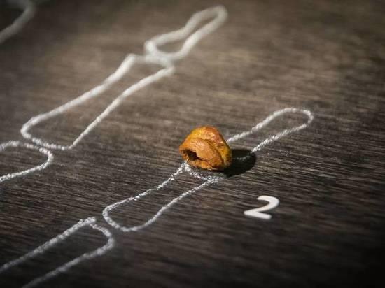 Пальцы, найденные в Денисовой пещере на Алтае, напомнили человеческие