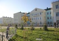Губернатор оценил реализацию проектов развития в Советском районе