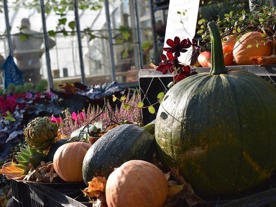Осенняя ярмарка пройдёт на выходных в карельском посёлке под Петрозаводском