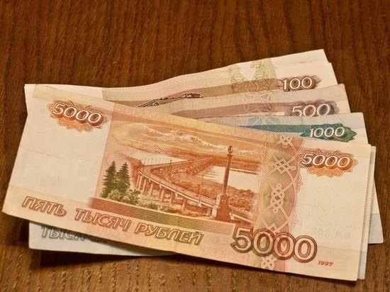 Сотрудника рязанского лесничества подозревают в мошенничестве