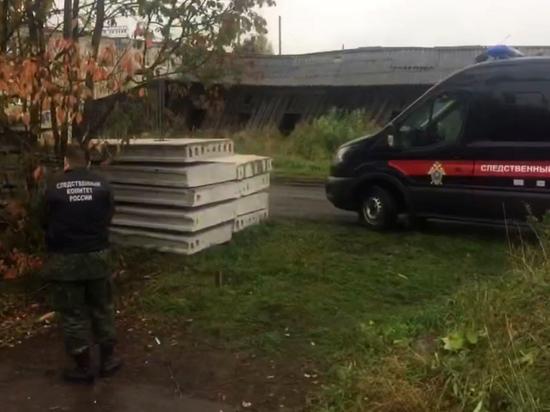 Под Вологдой второй день разыскивают пропавшую двухлетнюю девочку