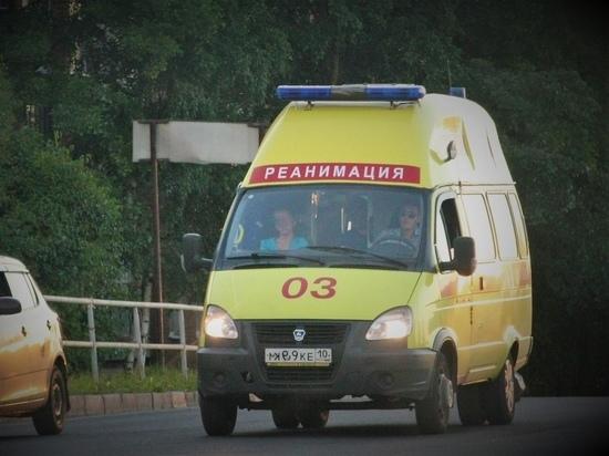 В Карелию поступят новые машины скорой помощи и школьные автобусы