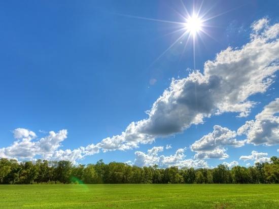 В Воронеже ожидаются теплые и солнечные выходные