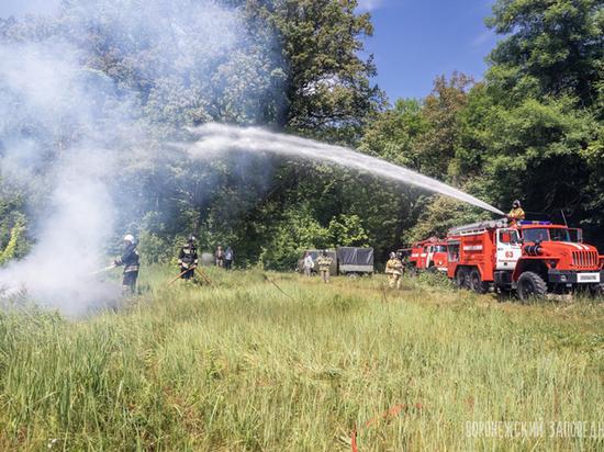 В леса Воронежского заповедника запретили вход из-за угрозы пожаров