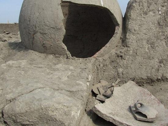 Добычу «черных копателей» передали в краснодарский музей им. Фелицына