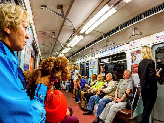 Проезд в метро в Петербурге стал дешевле