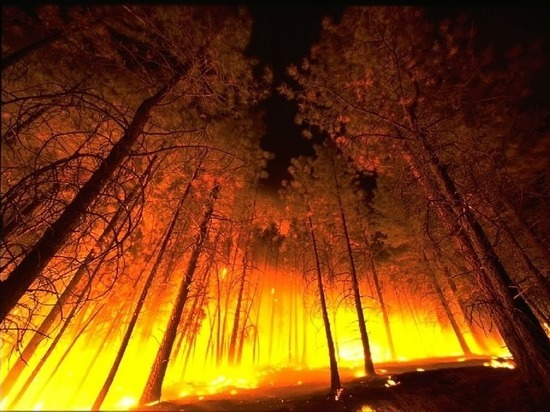 В Забайкалье наблюдают за лесными пожарами на 17 тыс га