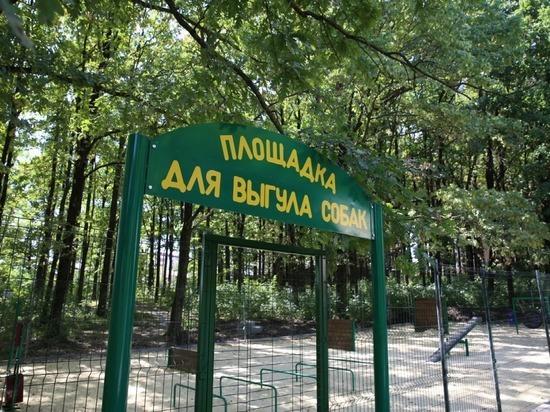 В Ставрополе открыли вторую площадку для выгула собак