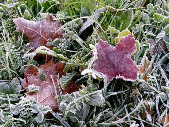 В Оренбуржье ожидается минусовая температура