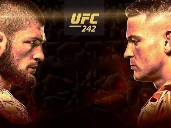 Гид по турниру UFC 242