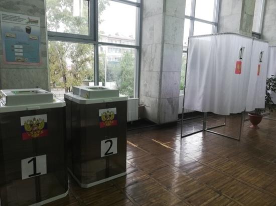 Явка на выборах в Забайкалье к обеду достигла 12,69%