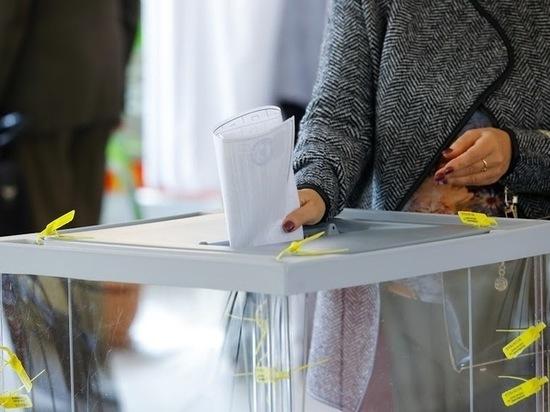Выборы губернатора Волгоградской области 2019: онлайн-трансляция