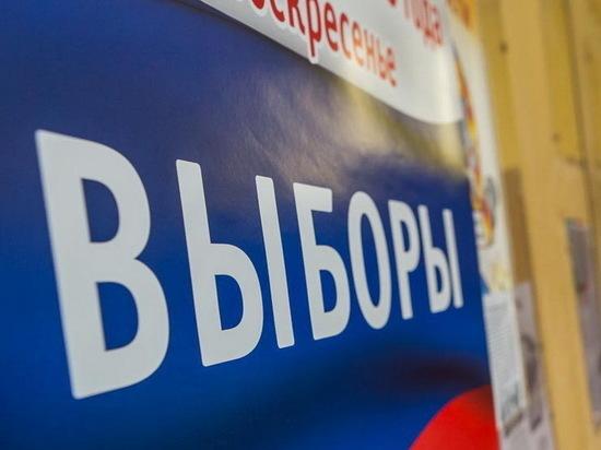 На выборах в Краснодарском крае работают 600 наблюдателей