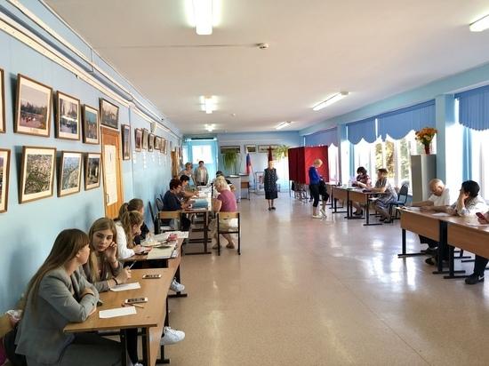Тульский избирком подсчитал явку избирателей на 15.00